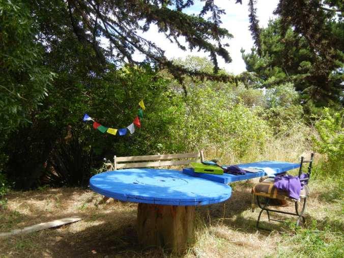 Jardín del hostal, lugar ideal para la escritura, encuentros y conexión.
