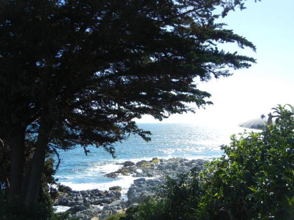 Vista desde la Terraza Museo Pablo Neruda Isla Negra