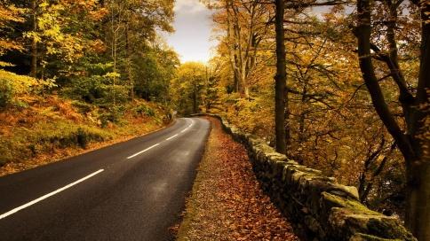 otoñocamino