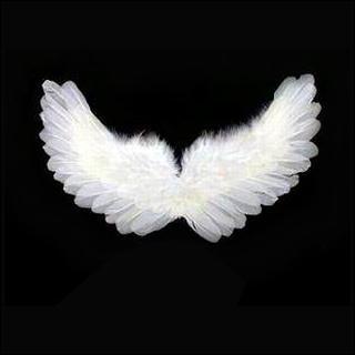 alas-angel1