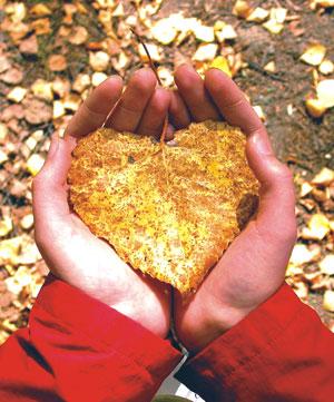 autumn-leaveslove