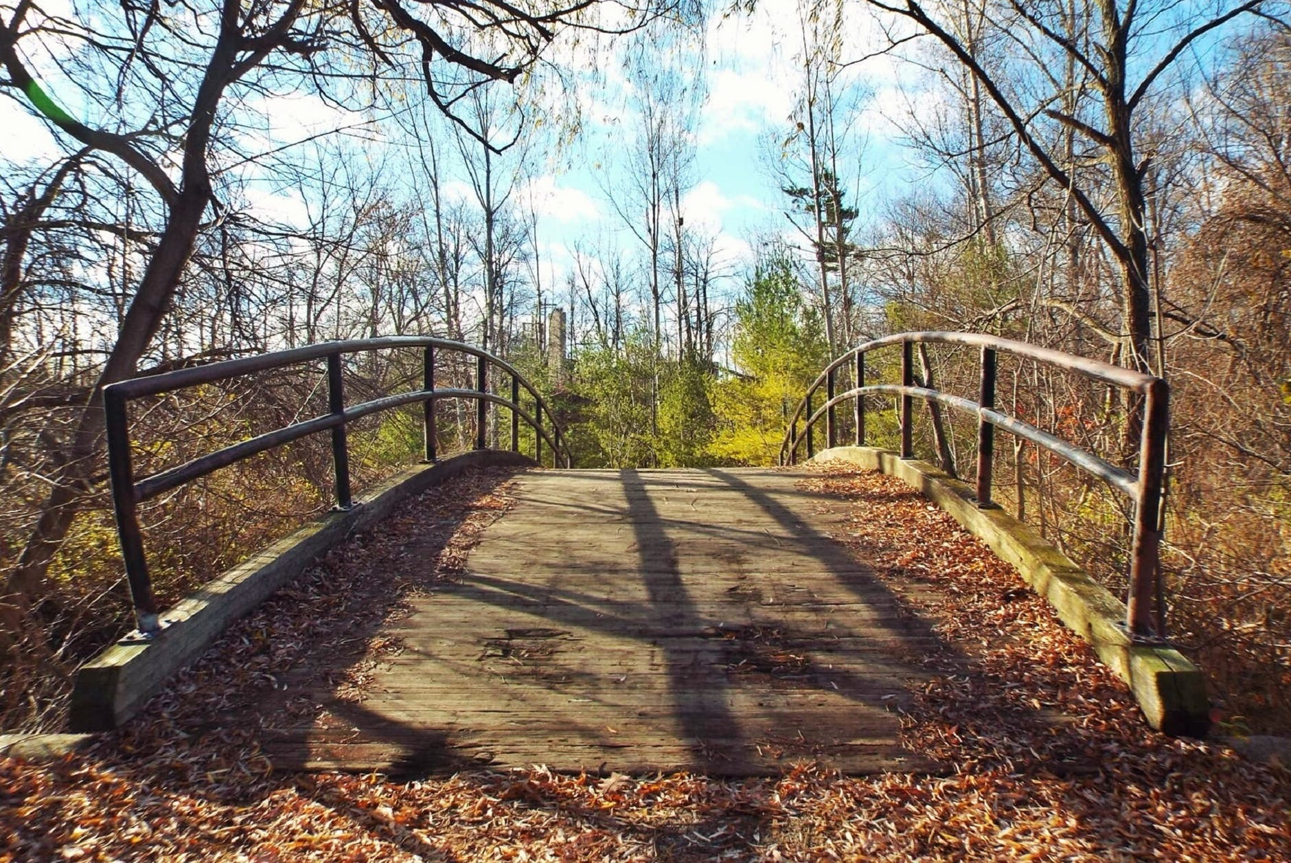 bridge photography during daytime